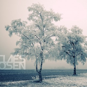 Claes Rosen - End Of December 2014 Mix